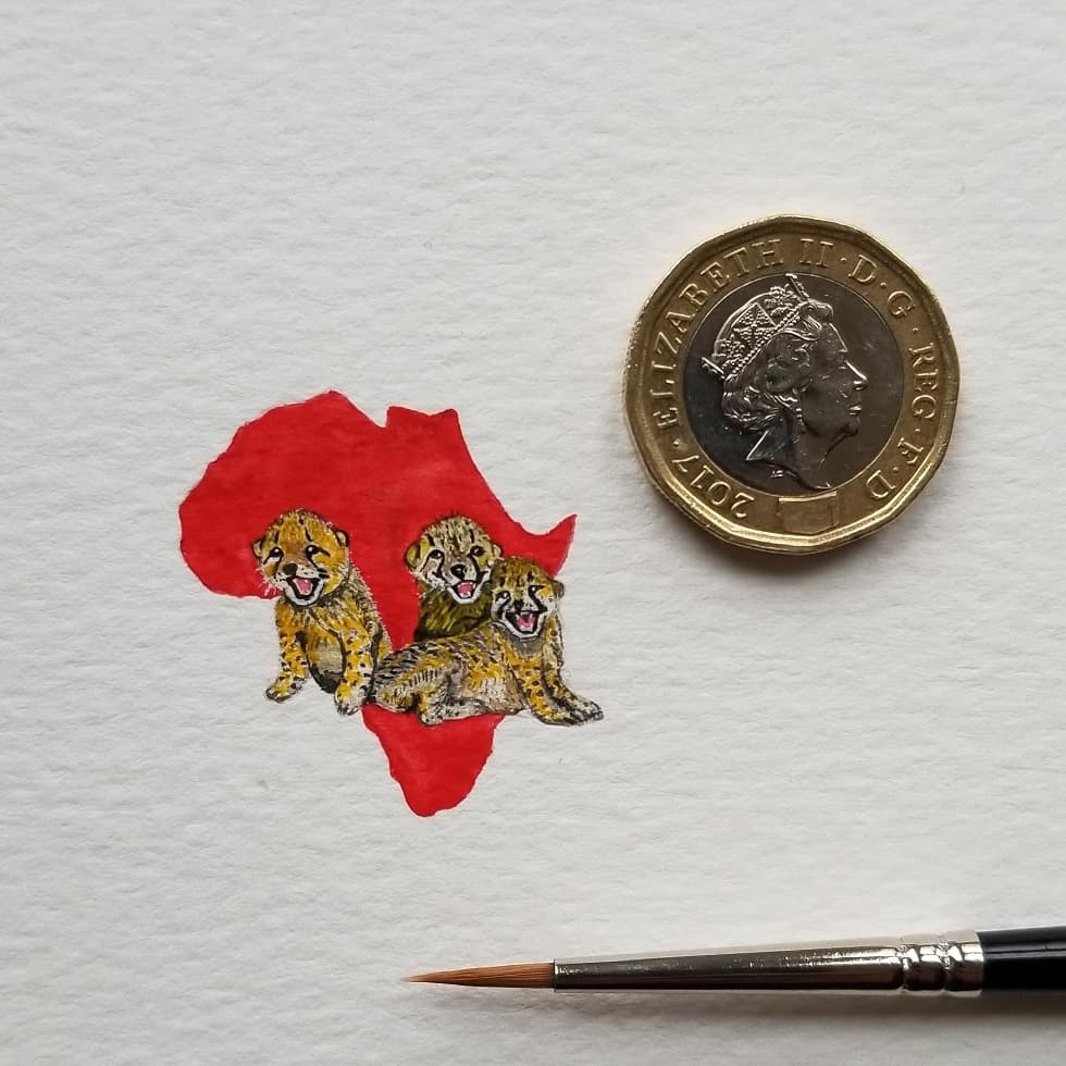 #TINYREDAFRICA (2) ACINONYX JUBATUS(19X20MM) - A HUMBLE GESTURE TOWARDS ALL THE MISSIONS OF @TUSK_ORG
